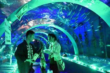 トンネル水槽の幻想的な雰囲気の中、日本酒を楽しむ来場者