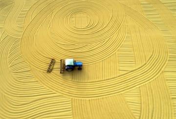 秋の農場、天日干しの風景 江蘇省淮安市