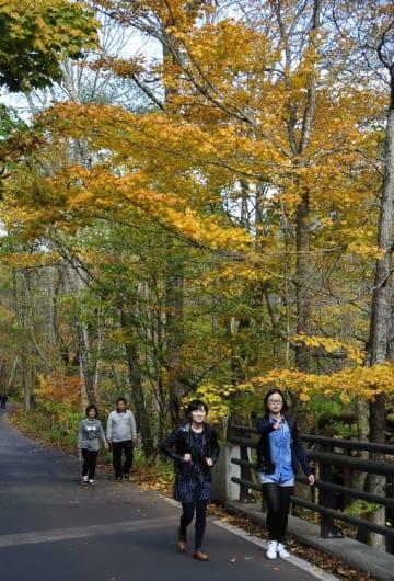 奥入瀬渓流の紅葉を楽しみながら散策する観光客=25日、十和田市
