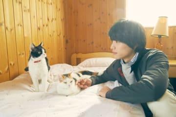映画「旅猫リポート」の一場面 (C)2018「旅猫リポート」製作委員会 (C)有川浩/講談社