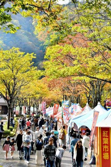 色づき始めた木々の下、大勢の来場者でにぎわう九頭竜紅葉まつり=10月27日、福井県大野市角野の九頭竜国民休養地