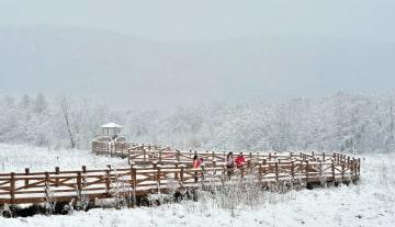 雪化粧のフルンボイル市 内モンゴル自治区