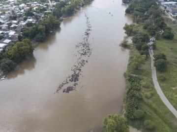 メキシコとの国境の川を渡る移民の集団=29日、グアテマラ南西部テクンウマン(AP=共同)