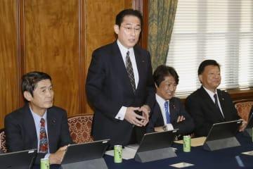 自民党政調審議会であいさつする岸田政調会長=30日午後、国会