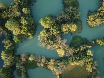 西渓湿地の秋景色 浙江省杭州市