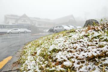 明け方から雪が降り、草や落ち葉の上はうっすらと白く染まっていた=30日午前8時半ごろ、青森市の酸ケ湯温泉