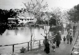 大きな池沿いに遊歩道が整備され、ぼんぼりが立つ「丸山遊園地」(神戸アーカイブ写真館提供)