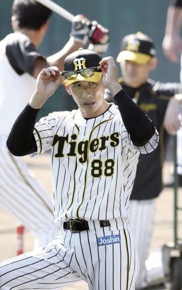 秋季キャンプが始まり、練習を見守る阪神の矢野新監督=高知県安芸市