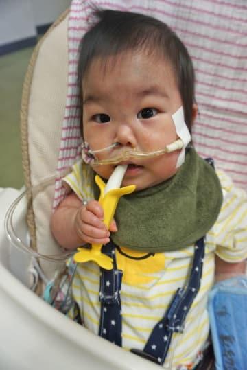 一刻も早い心臓移植が必要な川崎翔平ちゃん=大阪府内の病院(母親の静葉さん提供)