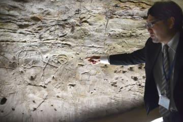 資料館へ移設された、合戦原遺跡の線刻壁画=3日、宮城県山元町の歴史民俗資料館