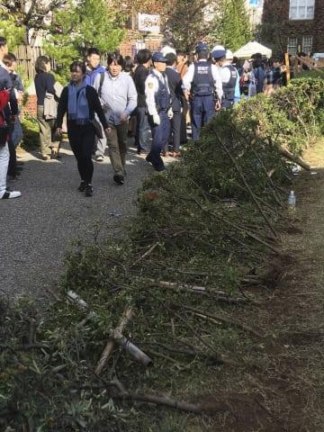 立教大の学園祭で人が押し寄せ、なぎ倒された生け垣=3日午後、東京都豊島区