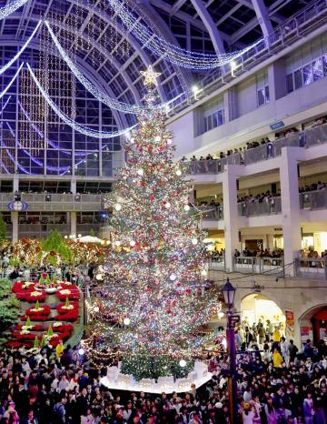 札幌市の大型商業施設で点灯された高さ約14メートルの巨大クリスマスツリー。約4万個のLED電球が輝き、買い物客が一足早いクリスマスムードを楽しんだ=3日夕