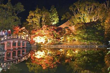 福島県いわき市の国宝白水阿弥陀堂で始まったライトアップ。境内の池に紅葉が映え、焦げ茶色の阿弥陀堂が秋らしい風情で闇に浮かび上がった=3日夜