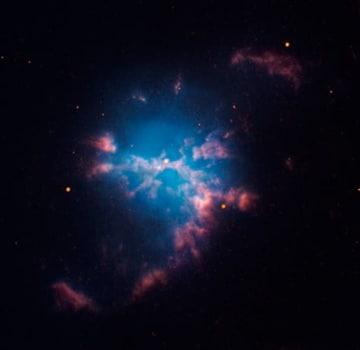 ハッブル宇宙望遠鏡で確認された惑星状星雲M3-1の画像(C)David Jones / DanielLópez - IAC