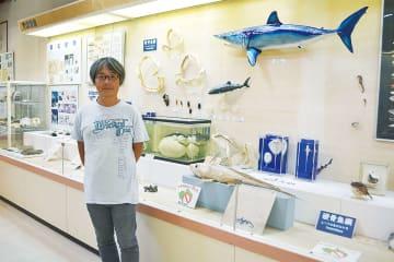 ▲担当する観音崎自然博物館の海洋生物コーナーで