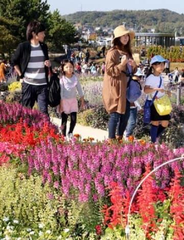 閉幕を前に、山口県産の花が咲き誇る大花壇を散策する来場者