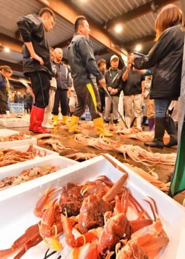 昨年の解禁初日、続々と競りにかけられる越前がに=2017年11月6日、福井県越前町大樟の越前漁港