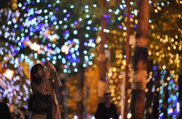 大阪市のメインストリート・御堂筋でイチョウ並木のイルミネーションを撮影する女性=5日夜