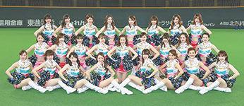 北海道日本ハムファイターズはファイターズガールの新メンバーを募集している(球団提供)