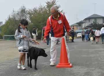 盲導犬の誘導を体験する小堤小の児童たち=古河市小堤