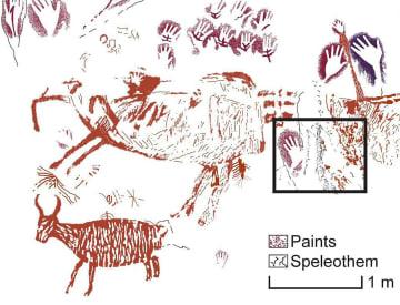 洞窟壁画をなぞったイラスト。黒い四角の枠内から4万年前の年代を示す試料が採取された。上部や四角の中に手形があり、左下には野生の牛らしき動物が描かれている(研究チーム提供)
