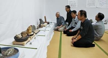 【石の姿や色合いなど、趣のある作品が展示されている(和歌山県田辺市湊で)】