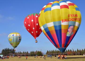 次々と青空に飛び立つ熱気球=10日午前、小山市外城