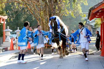 おはらいの後、境内を駆ける飾り馬と勢子=八代市