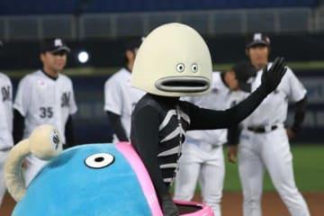 台湾でも人気を博す千葉ロッテのマスコットキャラクター「謎の魚」【写真:(C)PLM】