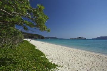 座間味島「阿真ビーチ」(OCVB提供)