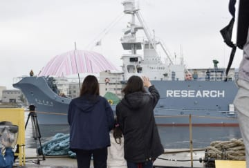 "Japanese ships leave for ""research whaling"" in Antarctic Ocean"