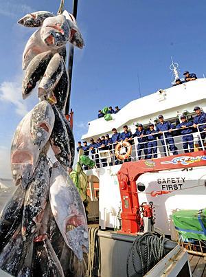 「マグロ」など漁獲!生徒が水揚げ いわき海星高・福島丸帰港