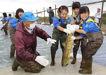 庄川でサケつかみ取り体験 高岡・野村小児童