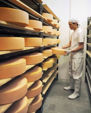 FEATURE: Japanese cheese factory aims to cut it in face of foreign competition