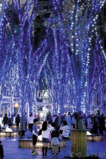 さいたま新都心で点灯したイルミネーション=10日午後、埼玉県さいたま市中央区のけやきひろば