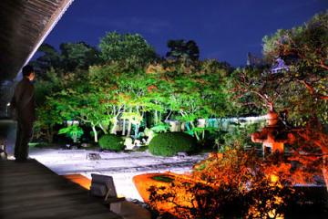 これから見頃を迎える紅葉や庭のライトアップ(京都市上京区・妙顕寺)