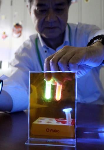 開発したキットを使って実演し、容器内で緑や赤に光る動物細胞の様子を見せる内海教授