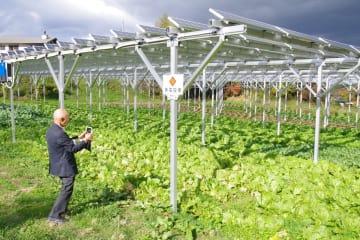 完成した発電施設。下の農地で白菜などを作る
