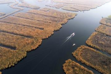 初冬迎えた自然豊かな白洋淀 河北省雄安新区