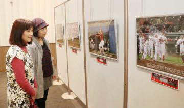 広島東洋カープの活躍を伝える報道写真展