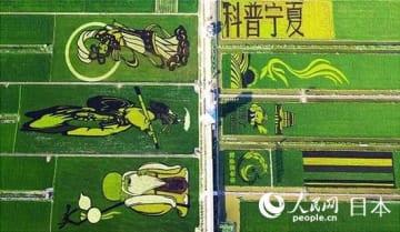 日本の技術革命、中国の生態農業発展を促進―中国メディア