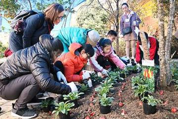 友好の証、球根植える 砺波で嘉義市(台湾)の児童