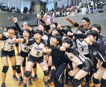 「春高」出場を決め、喜びを爆発させるチーム
