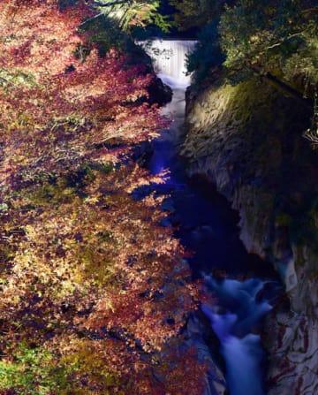 モミジや峡谷がライトアップされている長田峡公園