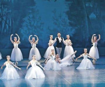 124人、華麗なステップ 金沢シティバレエ団が公演