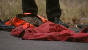 ハンターが誤射...男性死亡 シカ猟で「動物と間違えた」