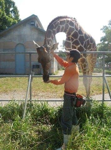 【動物を幸せに~大牟田動物園の挑戦】(5) ハズバンダリートレーニング(中) 1日5分の訓練を重ね [福岡県]