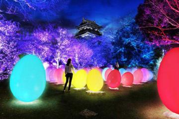 デジタルアートで広島城の夜に彩り 来年2月―4月「光の祭」