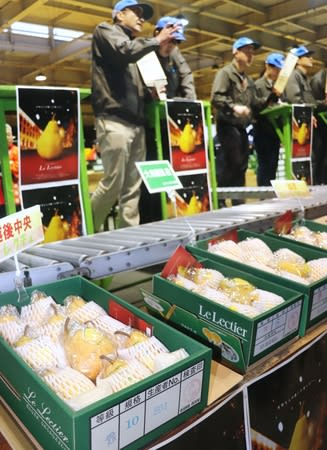県内各地から出荷されたル・レクチエが次々と競り落とされた初競り=21日、新潟市江南区