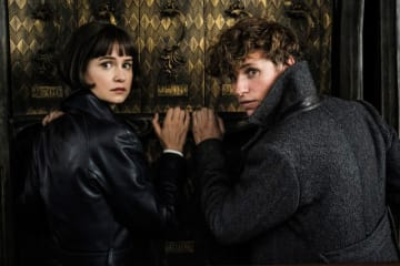 ニュートとティナの関係も気になる - (C) 2018 Warner Bros. Ent. All Rights Reserved Harry Potter and Fantastic Beasts Publishing Rights (C) J.K. Rowling